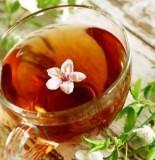 травянной чай и грибы кандида