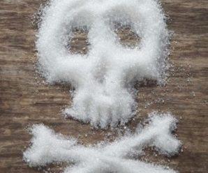 Все О Грибках Candida. Ликвидировать продукты и токсины, которые наносят вред здоровью