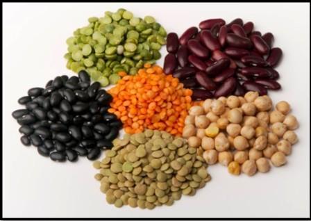 Все О Грибках Candida. Необходимо устранить из питания все зерна, орехи, семена и бобовые. Часть 2