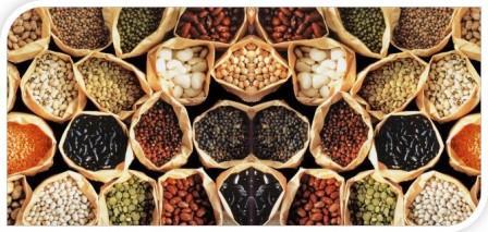 Все О Грибках Candida. Построить здоровый организм с помощью диеты. Потребление низкоуглеводной пищи
